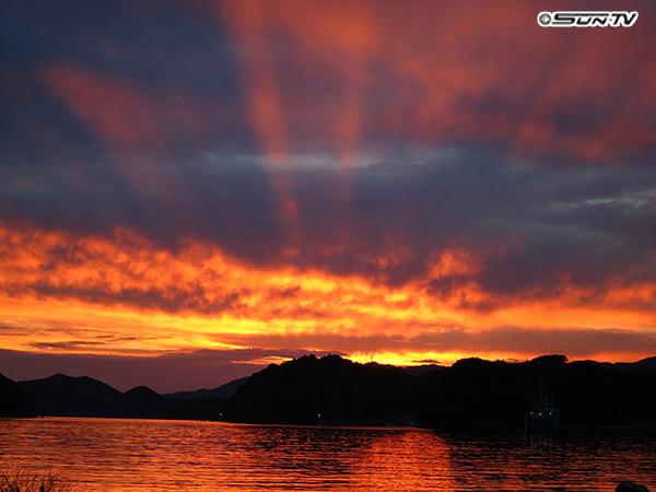 撮影場所:兵庫県 宿毛市 撮影者:河口千弥