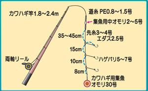 0215kawahagi.jpg