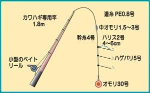 0816kawahagi.jpg